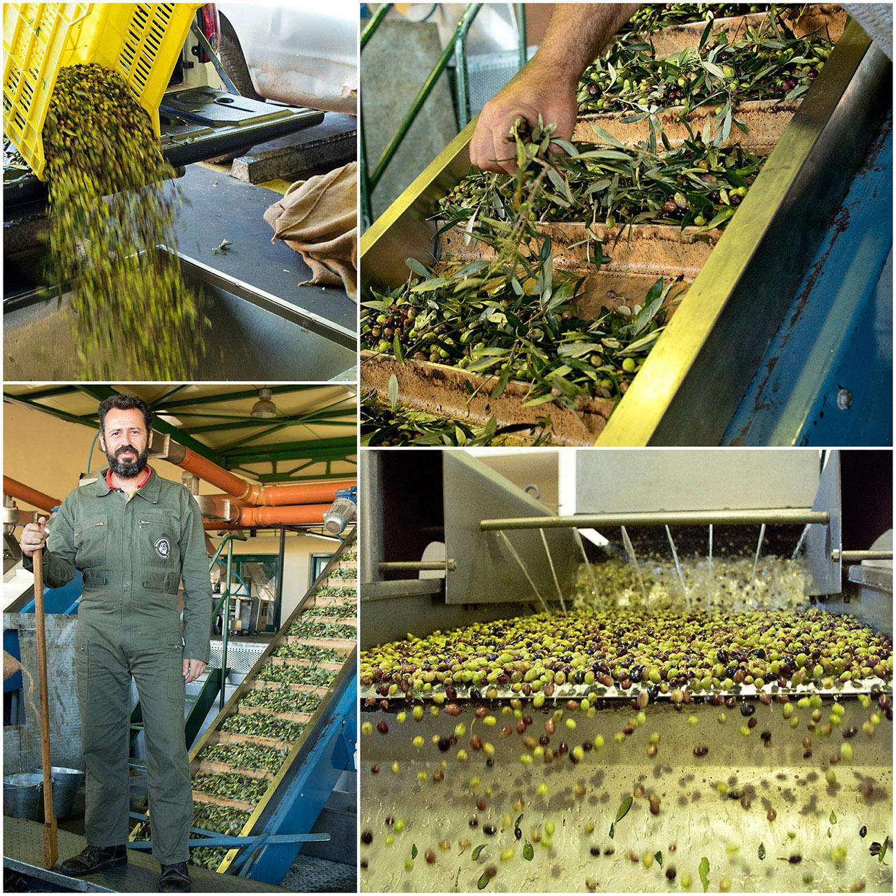 pressing-av-oliven