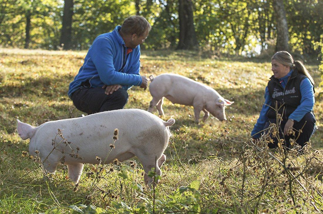 Gla'gris fra Eva og Hans Thøger Holmsen