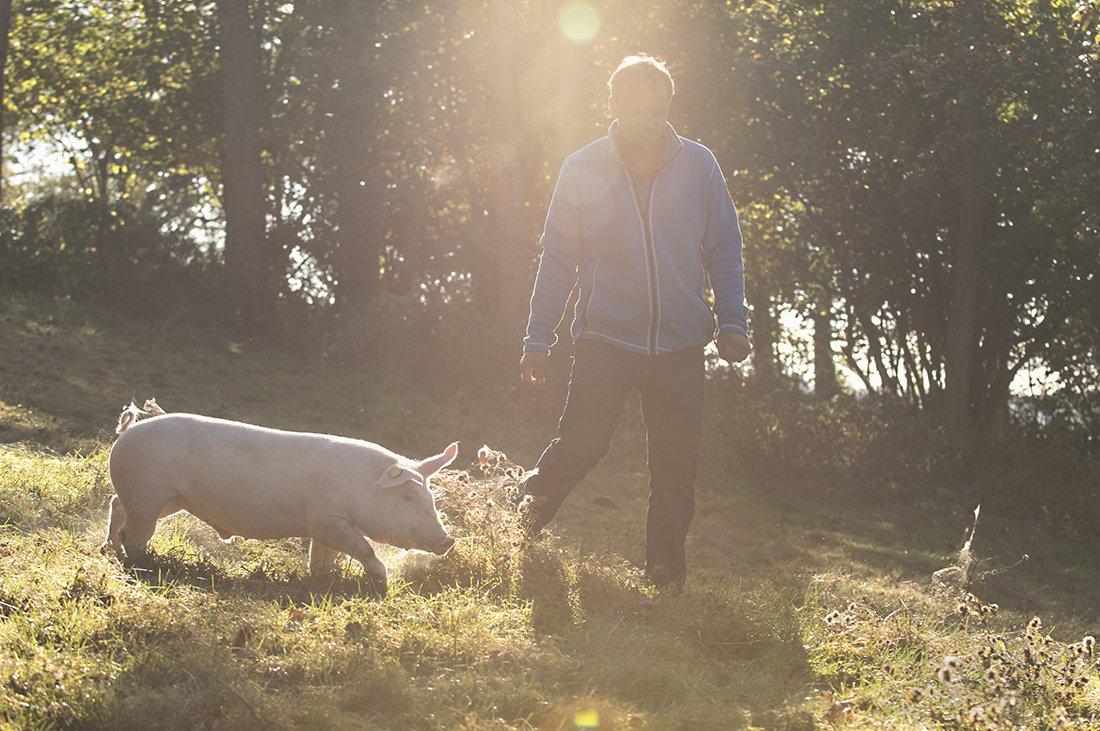Hals Thøger Holmsen med gla'gris