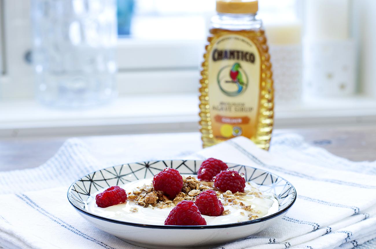 yoghurt-med-baer-og-agavesirup-3