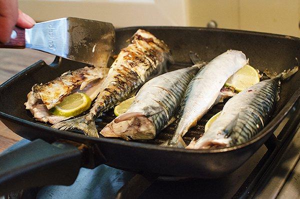 Grillet makrell med kålstuing