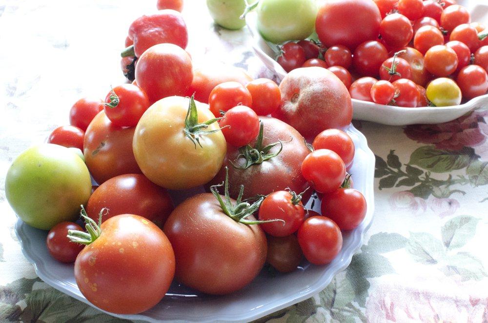 Makaroni med hjemmelagd tomatsaus