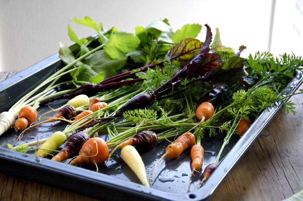 Lammeskanker med ovnsbakte grønnsaker