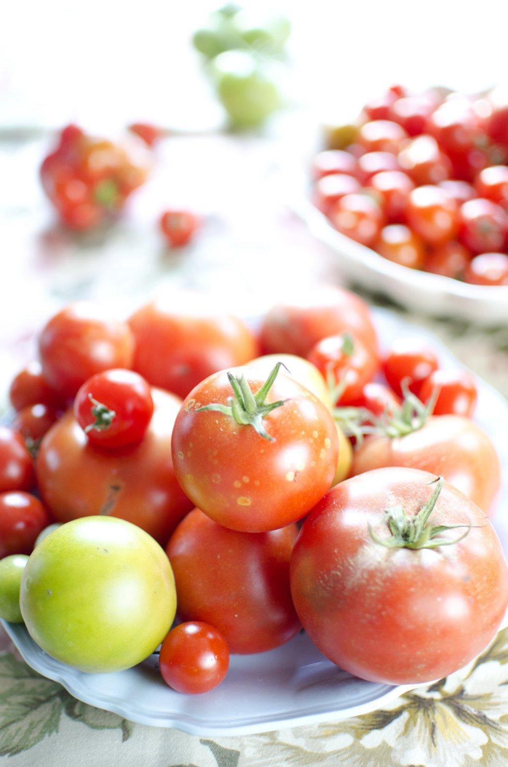 Tomat- og mozzarellasalat med pesto